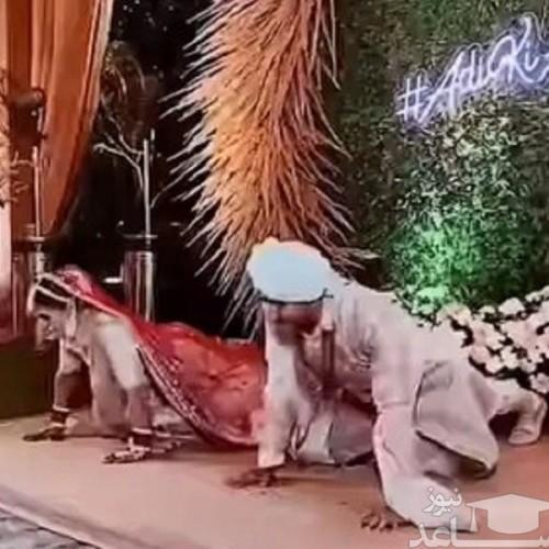 شنا رفتن عروس و داماد روی استیج عروسی جنجالی شد! + فیلم