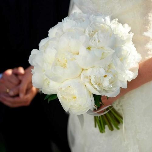سوژه شدن عروسی که با 6کیلوگرم طلا به منزل شوهر رفت!