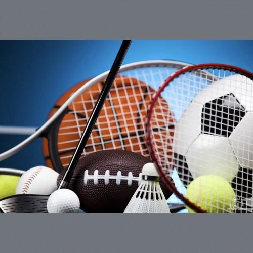 سومین همایش ملی علوم ورزشی، تربیت بدنی و مدیریت راهبردی در ورزش