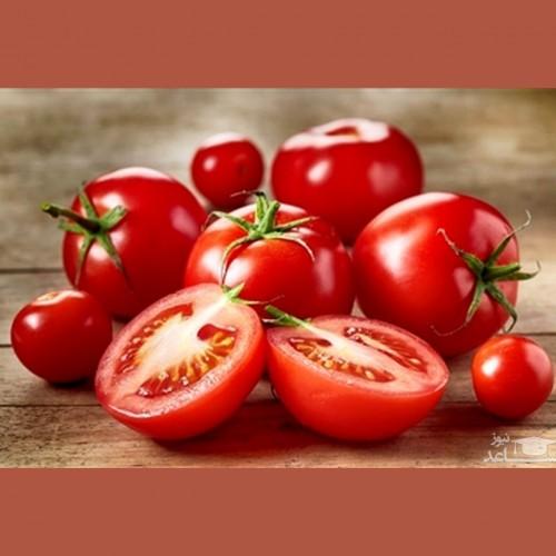 توضیحات رئیس اتحادیه بارفروشان از قیمت گوجه فرنگی