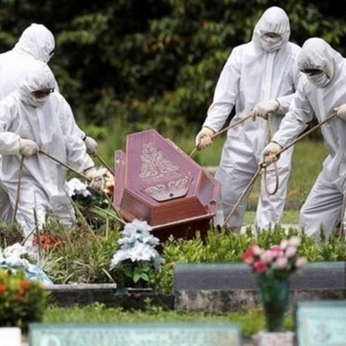 واکسن کرونای «فایزر» و «مدرنا» 501 کشته دادند