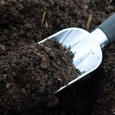 دیدن خاک در خواب چه تعبیری دارد؟ / تعبیر خواب خاک