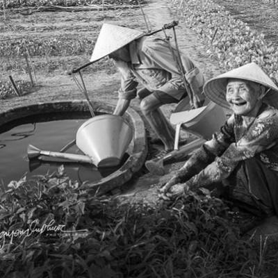 داستان عاشقانه یک زوج قدیمی ویتنامی