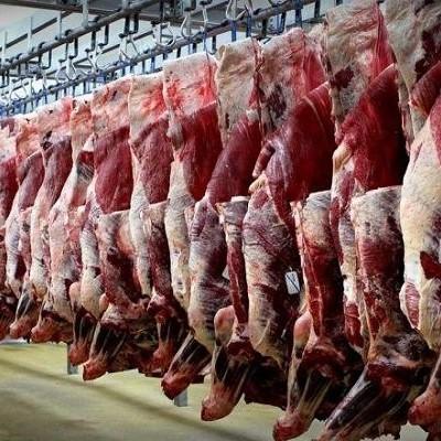 (فیلم) لحظه عجیب تکان خوردن تکه گوشت در قصابی