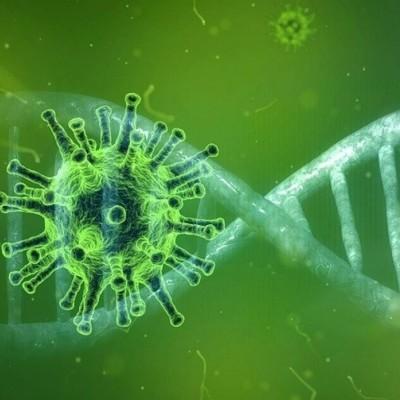 کشف نشانه اصلی ابتلا به ویروس کرونا