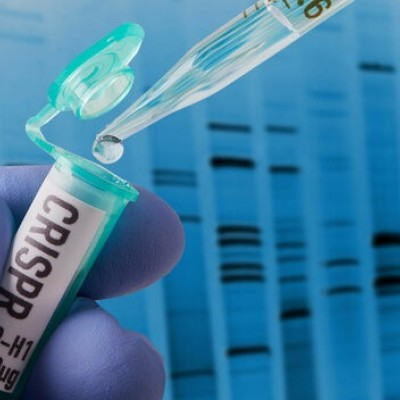 احتمال مرگ زودرس اولین نوزادان مهندسی ژنتیکی شده دنیا