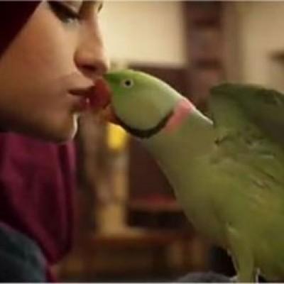 ماجرای جنجالی «بوسه سارا در پایتخت» که باعث سوءبرداشت شد