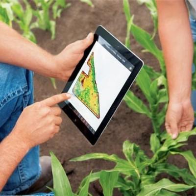 دانلود سوالات و کلید آزمون کارشناسی ارشد رشته مدیریت کشاورزی سال 98