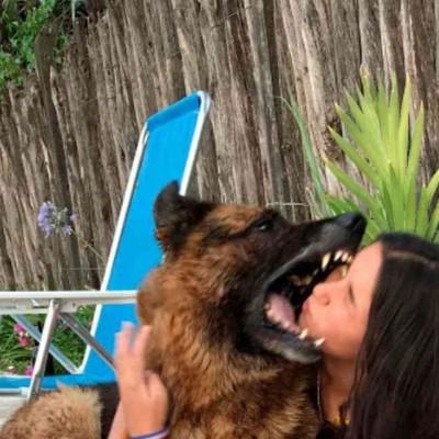 اقدام خیلی خطرناک دختر جوان در گرفتن عکس یادگاری با سگ