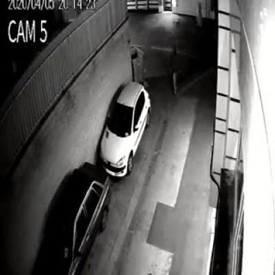 (فیلم) سرقت ۲۰۶ در کسری از ثانیه!
