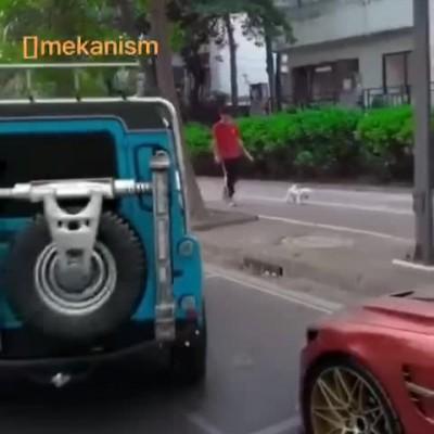 (فیلم) مکانیزم خلاقانهای برای پارک دوبل